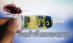 รีวิวเจลกำจัดแมลงสาบ ราคาหลักร้อย เพียง 1 สัปดาห์ ปีเตอร์หายเกลี้ยง!!