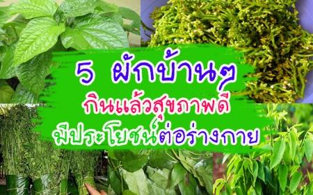 5 ผักบ้านๆ กินแล้วสุขภาพดี มีประโยชน์ต่อร่างกาย!!