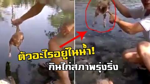 ชาวเน็ต งง! ตัวอะไรอยู่ในน้ำ! จุ่มไก่ลงไปในน้ำ พอเอาขึ้นมาไก่สภาพรุ่งริ่ง