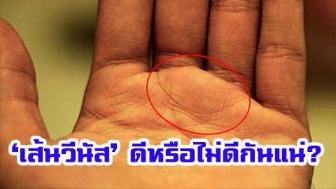 'เส้นวีนัส' บนฝ่ามือ ดีหรือไม่ดีกันแน่?