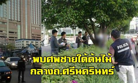 พนักงานกวาดขยะช็อก พบศพชายห้อยใต้ต้นไม้ กลางเกาะถนนแยกกรุงเทพกรีฑา !!!