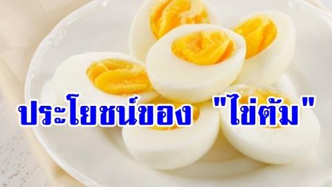 รู้หรือไม่!! คุณประโยชน์ของ ไข่ต้ม อาหารพื้นๆ ที่มีดีกว่าที่คิด