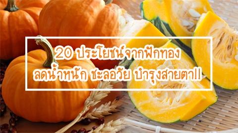 20 ประโยชน์จากฟักทอง ลดน้ำหนัก ชะลอวัย บำรุงสายตา!!