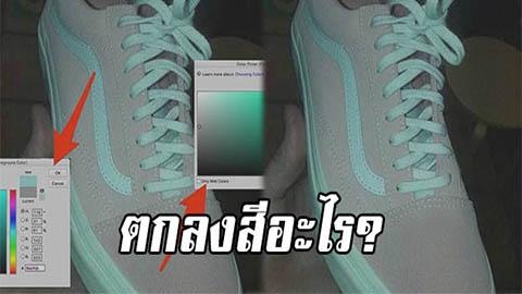 เถียงกันสนั่นโซเชี่ยล! รองเท้าข้างนี้ตกลงสีอะไร? ชมพูขาวหรือเทาเขียว อ.เจษฎา เฉลยคำตอบ!