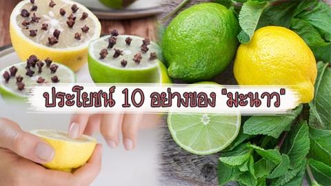 ประโยชน์ 10 อย่างของ