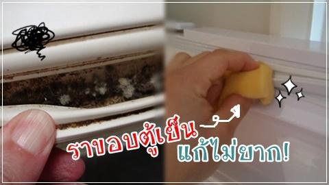 เคล็ดลับกำจัด ราขอบตู้เย็นด้วยตัวเอง ยางไม่เสื่อม สะอาดเอี่ยม!