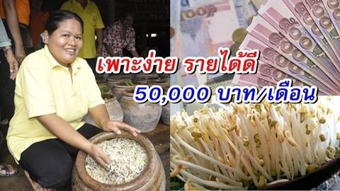 ''เพาะถั่วงอกในโอ่ง'' เงินดีกว่างานประจำ รายได้อย่างต่ำเดือนละ 50,000 !!