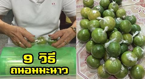 9 เคล็ดลับ !!! วิธีเก็บมะนาวให้สดใหม่ให้ได้นานกว่า 5-6 เดือน !!!
