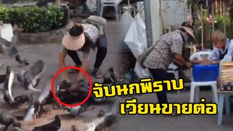 บุญหรือบาป!! แม่ค้าหน้าวัด ตะครุบนกพิราบยัดกรงเวียนขายต่อให้คนทำบุญ!