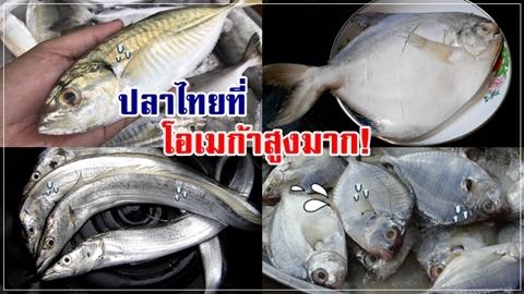 10 ปลาไทย โอเมก้าสูง ไม่แพ้ปลานอก