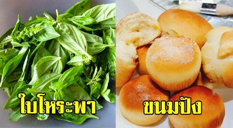 14 อาหาร ที่ไม่ควรนำไปแช่ตู้เย็น เสียรสชาติ-แข็ง แถมบางชนิดยังเละอีกตั้งหาก !!!