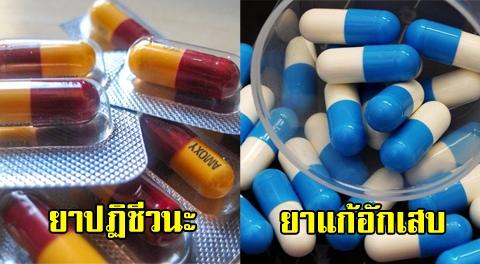 เผยข้อแตกต่าง ''ยาปฏิชีวนะ (ไม่ใช่) ยาแก้อักเสบ'' ควรทานให้ถูกโรค !!!