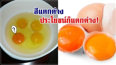 ไข่แดงสีแบบไหน ให้ประโยชน์ได้มากกว่า!!