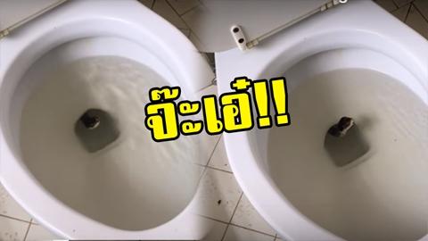 คนงานสะดุ้งหนัก!! ล้างห้องน้ำเจอเงาดำโผล่จ๊ะเอ๋ ก้มหน้าดูดี ๆ แทบช็อก ! (มีคลิป)