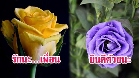 สีบอกความนัย! อ่านใจผู้ชาย จากสีดอกไม้ ที่เขามอบให้คุณ