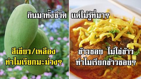 หายสงสัย!! รวม 7 อาหาร ที่เคยกินมา