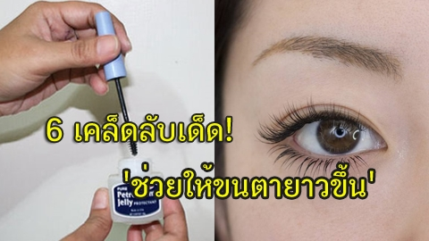 6 เคล็ดลับเด็ด! 'ช่วยให้ขนตายาวขึ้น' งอนเด้ง ดกดำ ไม่ขาดแหว่ง เลิกติดขนตาปลอมไปเลย!!