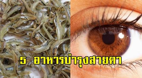 5 อาหารช่วยบำรุงดวงตา-สายตาและการมองเห็นให้คมชัดมากยิ่งขึ้น !!!