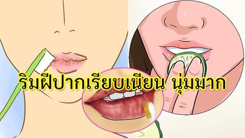 หมดปัญหาแห้งแตก! 5 วิธีบำรุงริมฝีปากให้เนียนเรียบ นุ่มน่าจุ๊บ #ปากไม่ลอกอีกต่อไป
