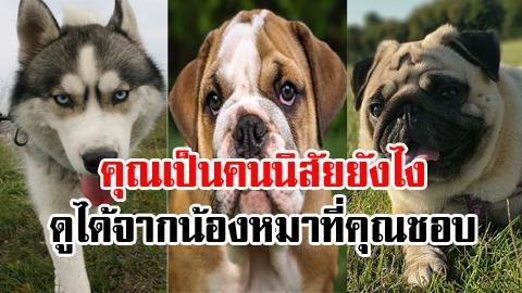เลือกน้องหมาที่ชอบ บ่งบอกบุคลิกภาพของตัวเอง (แม่นมาก)