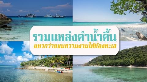รวมแหล่งดำน้ำตื้น ในไทย แหวกว่ายชมความงามใต้ท้องทะเล