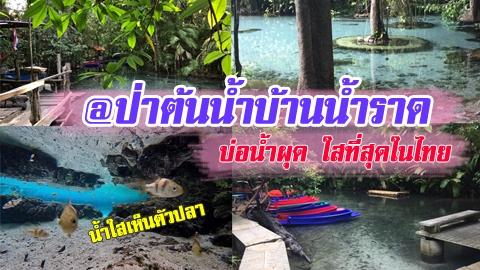 น้ำใสเห็นตัวปลา! สุดฟินกับบ่อน้ำผุด ใสที่สุดในไทย @ป่าต้นน้ำบ้านน้ำราด
