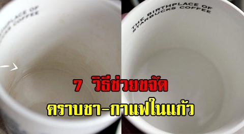 สุดยอด 7 เทคนิค ช่วยกำจัดคราบชา-กาแฟ ที่ฝังแน่นในแก้วให้กลับมาขาวอีกครั้ง !!!