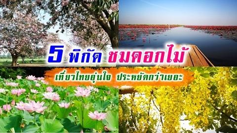 ชวนเที่ยวถ่ายรูป 5 พิกัดชมดอกไม้ เที่ยวไทยอุ่นใจ ประหยัดกว่าเยอะ!!