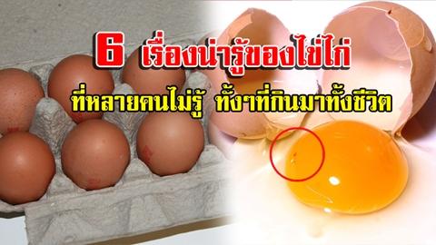 หลายคนอยากรู้!! 6 เรื่องน่ารู้ของไข่ไก่ ที่หลายคนสงสัย ทั้งๆที่กินมาตลอดทั้งชีวิต!