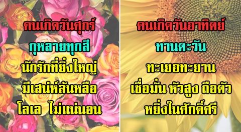 ดวงทายทักลักษณะนิสัย จากดอกไม้-ต้นไม้ประจำวันเกิด ทั้ง 7 วัน !!!