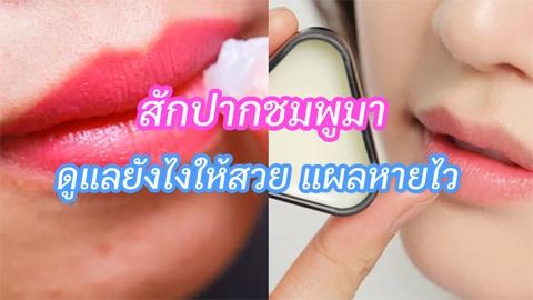 รู้ไว้ใช่ว่า! ไปสักปากชมพูมา ควรจะดูแลริมฝีปากยังไง ? ให้แผลหายไว #สวยสมบูรณ์แบบ