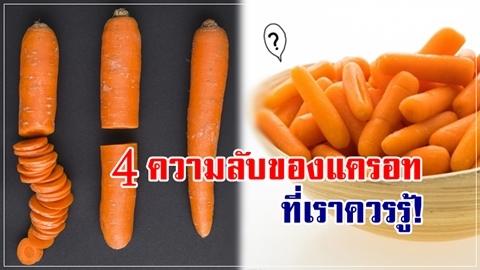 ได้คุณค่ามากกว่าเดิม!! 4 ความลับของแครอท ที่เราควรรู้กันเอาไว้!!