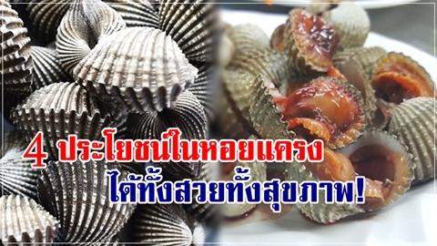 ผู้หญิงควรกิน!! 4 ประโยชน์ในหอยแครง ให้ทั้งสวย ให้ทั้งสุขภาพ!!
