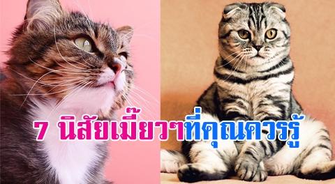 7 พฤติกรรมของน้องแมว ที่เขาชอบแสดงออกอยู่เป็นประจำ !!!