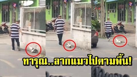 แชร์คลิป! ''ชายลากแมวไปตามพื้นถนน'' อ้างแมวเข้าไปในเขตบ้าน ประสานตร.สอบสวนต่อ!!
