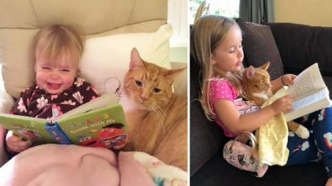สาวเก็บแมวไร้บ้านมาเลี้ยง สิบปีต่อมามันกลายเป็นเพื่อนสนิทสุดน่ารัก