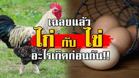 เฉลยแล้ว!! ปัญหาโลกแตก ''ไก่'' กับ ''ไข่'' อะไรเกิดก่อนกัน เกิดมาทั้งชีวิตเพิ่งรู้!!!