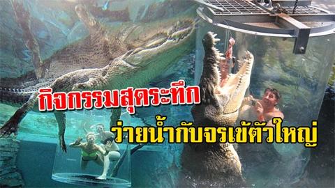กล้ามั้ย?! กิจกรรมสุดระทึก ว่ายน้ำกับจรเข้ยักษ์ขนาด 5 เมตร ท้าทายความกลัว!!