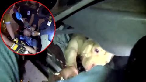 พบหนุ่มรถคว่ำ คลานเข้าไปช่วยหมาสุดรักที่ติดอยู่ในรถ ก่อนถูกส่งตัวไปรพ.