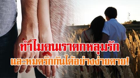 มีรักก็ต้องมีเลิก!! 3 ขั้นของความรัก ทำไมตกหลุมรัก และหมดรักกันได้อย่างง่ายดาย