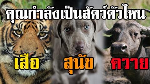 การดูสันดารคนในสังคมการทำงาน ตาม ''หลักการ เสือ ควาย และ สุนัข'' เพื่อนำพาองค์กรไปสู่ความสำเร็จ