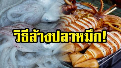 เคล็ดลับ!! ล้างปลาหมึกอย่างไรให้สะอาด ก่อนที่จะนำไปทำอาหาร