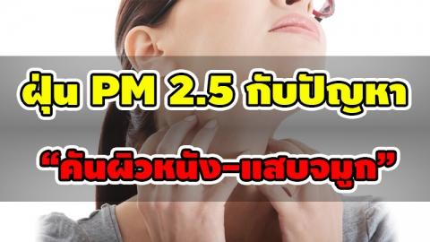 คันผิวหนัง และแสบจมูก ช่วงฝุ่นละออง PM 2.5 กำลังบุก มีวิธีแก้ปัญหานี้อย่างไร?
