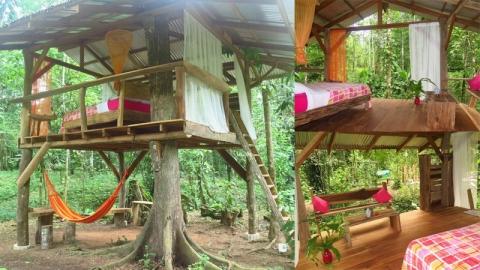 ไอเดียบ้านต้นไม้ ความฝันในวัยเด็กของหลายๆ คน เรียบง่าย ใช้งบไม่มาก
