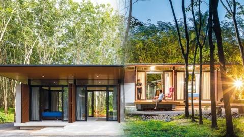 ไอเดียบ้านขนาดเล็ก ยกพื้นต่ำสไตล์โมเดิร์น โปร่งสบาย ท่ามกลางธรรมชาติ