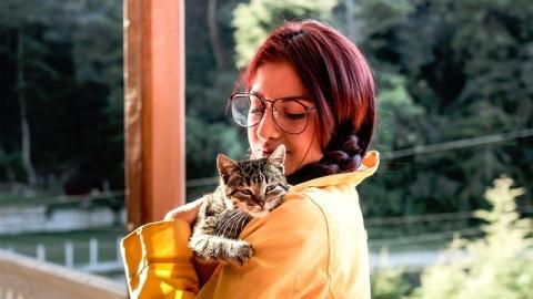 ทาสแมวควรรู้ 8 วิธีที่จะทำให้ แมวรักแมวหลง