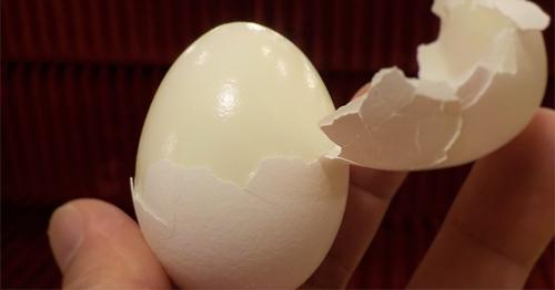 เคล็ดลับแกะไข่ต้ม เร็วและเนียนสวย เพียงแค่ใช้แก้วน้ำ!!