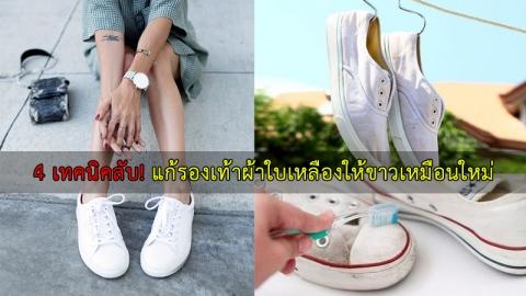 เคล็ดลับแก้ปัญหารองเท้าผ้าใบคู่โปรดเริ่มเหลือง ให้กลับมาขาวปิ๊งอีกครั้ง