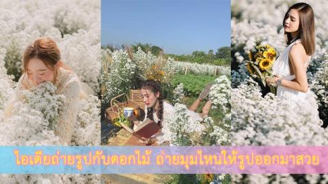เทคนิคถ่ายรูปกับทุ่งดอกไม้ โลเคชั่นยอดฮิตในหน้าหนาวนี้