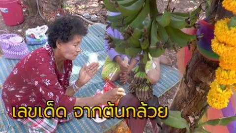 คอหวย แห่ขอโชคลาภ ต้นกล้วย หลังงวดที่แล้วถูกหวยทั้งหมู่บ้าน